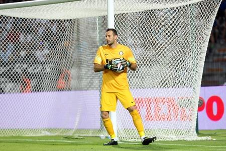 Samir Handanovic, Inter